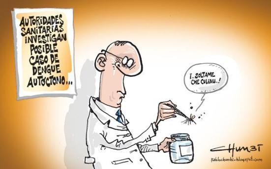 Chumbi dengue